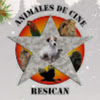 Animales de Cine Resican