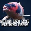 Chris Koi and Garden Blog