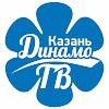 VC Dinamo Kazan