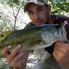 Creek Fishing Adventures