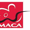 MACA Macau