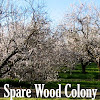 Spare Wood Colony