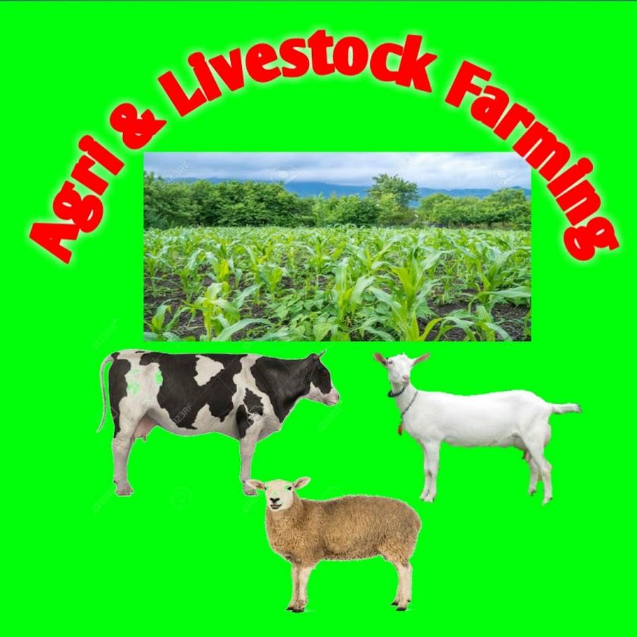 Goat Farming - Thủ thuật máy tính - Chia sẽ kinh nghiệm sử