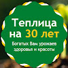 Теплицы ВОЛНА и ВИТА Нижний Новгород