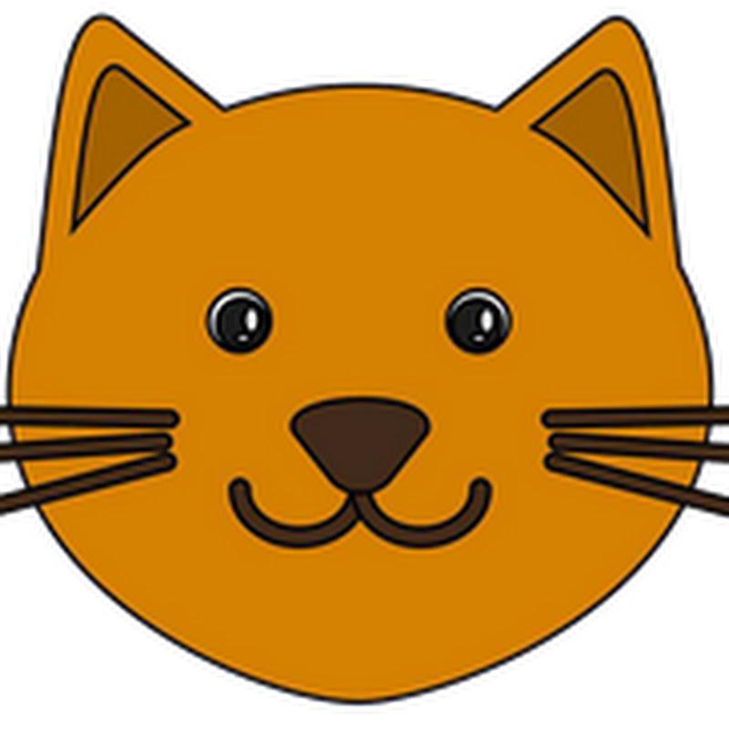 Gatti Pazzi Gatti Divertenti Prova A Non Ridere 09 Cats