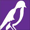 The Mockingbird Society