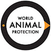 World Animal Protection Danmark