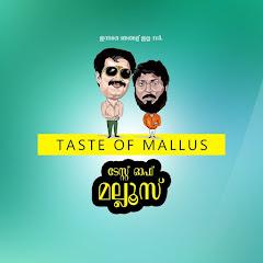 Taste Of Mallu Net Worth
