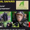 Achieve Global Safaris