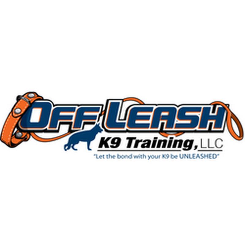 Off Leash K9 Training Florida