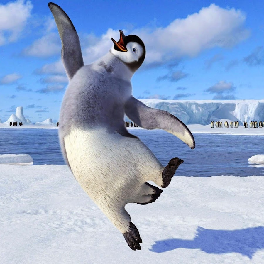 Доброе утро в январе с пингвинами картинки, для поздравления