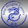 Selbstverteidigung by Blue Dragon
