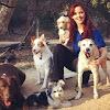 Ruff Beginnings Rehab Dog Training and Rescue