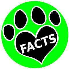 Animal Facts YouTube channel avatar