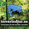 Terrariedjur