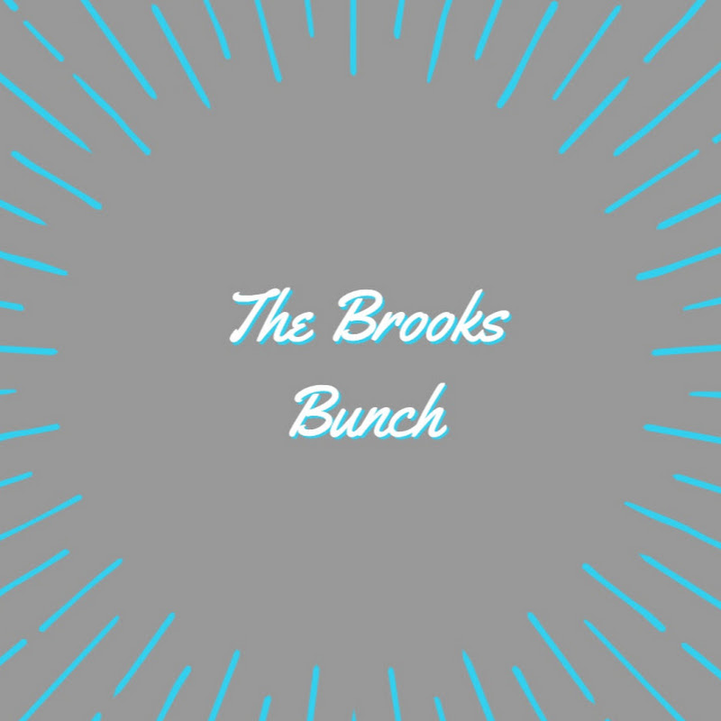 The Brooks Bunch (the-brooks-bunch-vlogs)