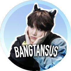 bangtansus Net Worth