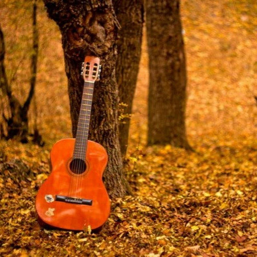 Открытка для гитариста, днем рождения