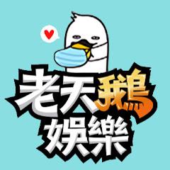 老天鵝娛樂 Net Worth