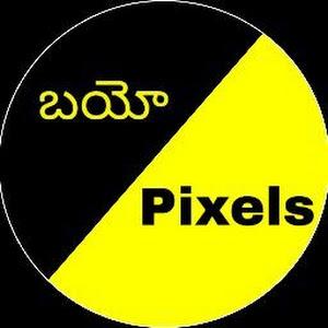 Bio Pixels