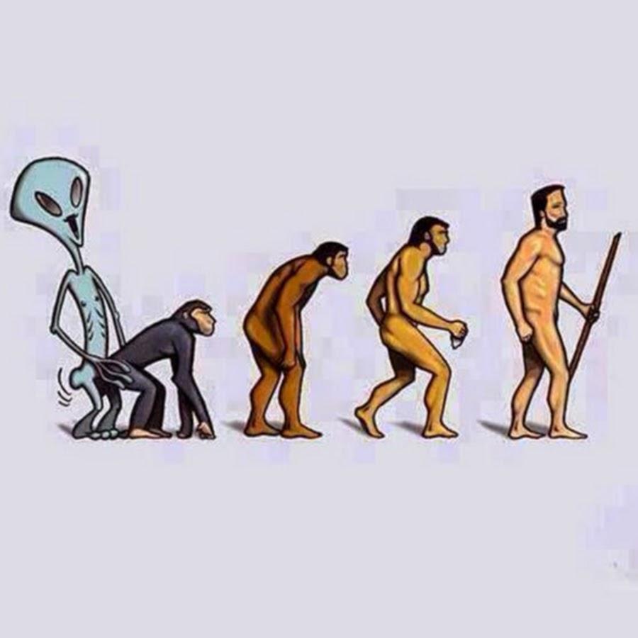 Днем, эволюция прикольные картинки