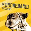 Dromedario Records