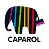 Caparol Farben Lacke Bautenschutz GmbH