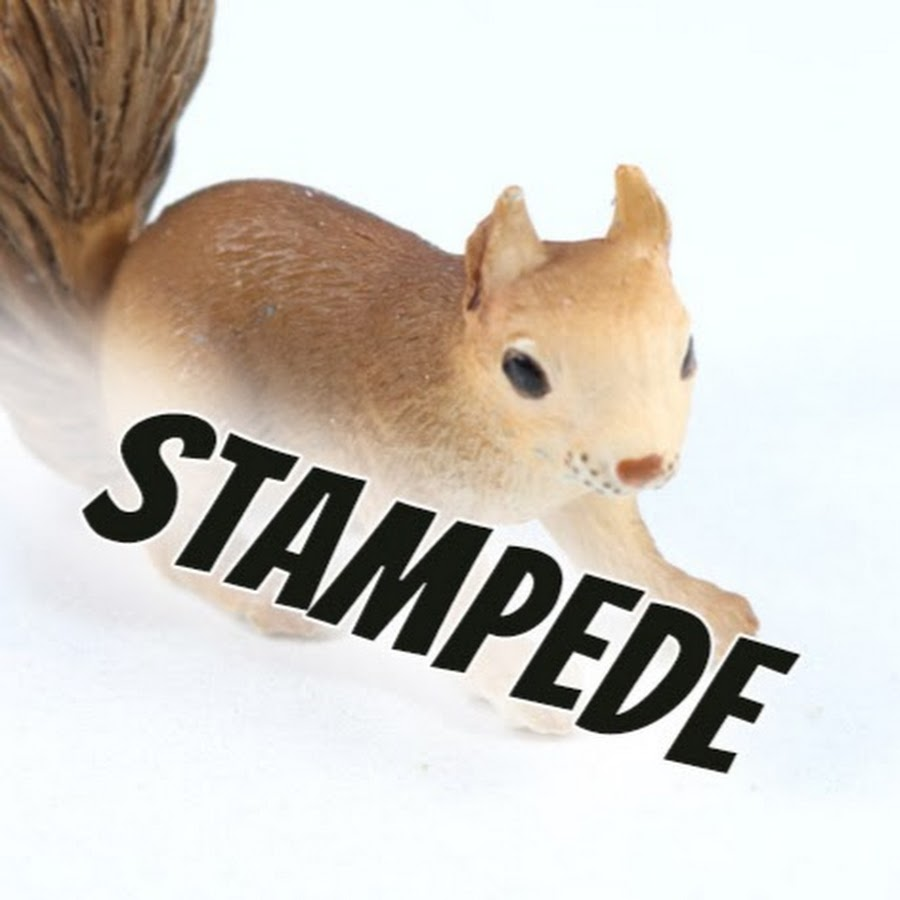 Squirrelstampede Youtube