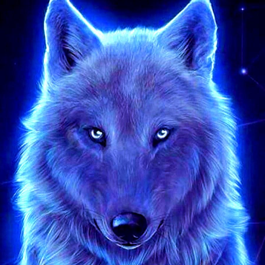 Mystic Wolf - YouTube