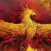 Phoenix726