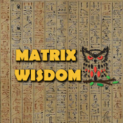 Matrix Wisdom Net Worth