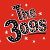 the309s Band