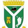 Concejo Municipal de San Rosendo