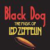 blackdogzeppelin