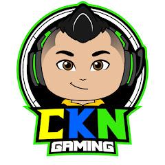 Cover Profil CKN Gaming