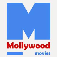mollywood movies Net Worth