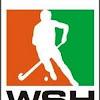 worldserieshockey