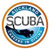 Auckland Scuba Dive