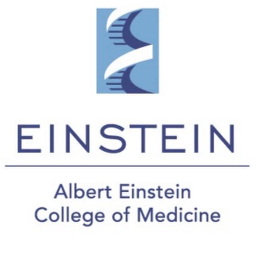Albert Einstein College of Medicine - YouTube