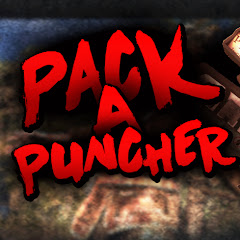 Pack A Puncher Net Worth
