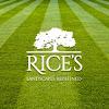 Rice's