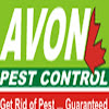 Avon PestControl