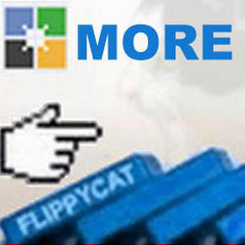 Moreflippycat YouTube channel image