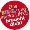 DIE LINKE. Stuttgart