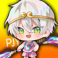 PJY` Gamer Net Worth