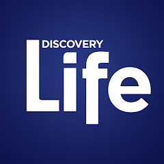 Discovery Life Net Worth