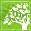 Cultivate Church