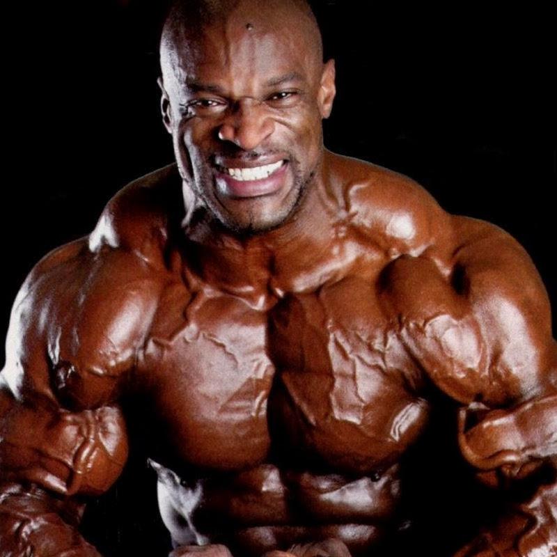 Bodybuilding TV (bodybuilding-tv)