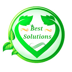 Best Solutions Net Worth