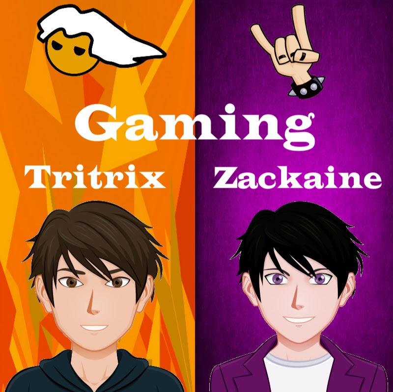 youtubeur Tritrix & Zackaine Gaming